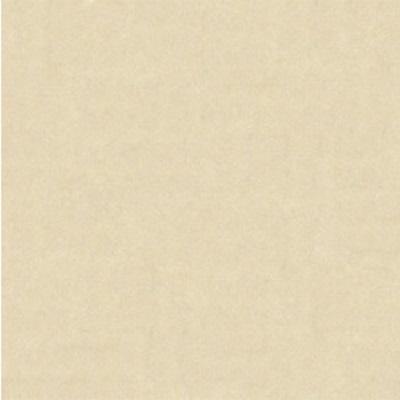Gạch lát nền Bạch Mã 60×60 MN60002 (Bỏ mẫu)