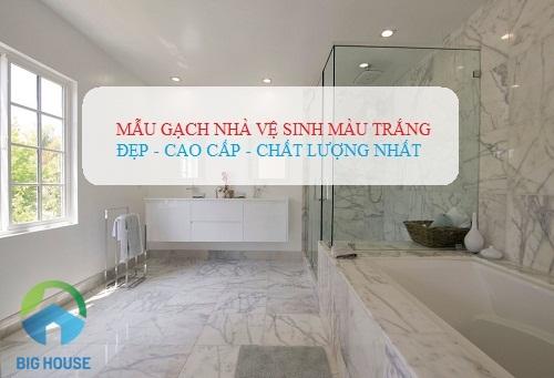 Mẫu gạch nhà vệ sinh màu trắng Sang – Đẹp – Chất lượng cho gia đình