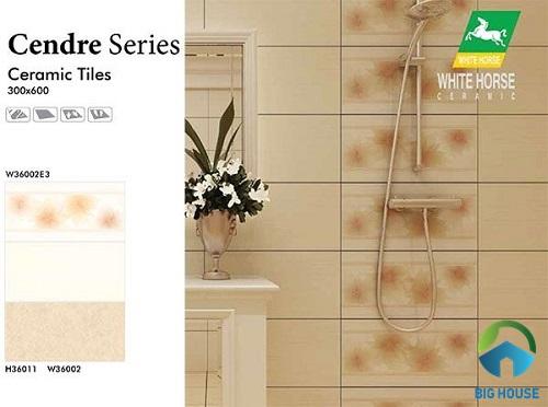 catalogue gạch ốp ceramic