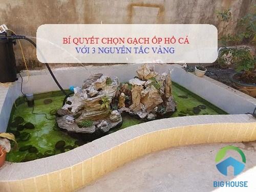 3 Nguyên tắc VÀNG chọn gạch ốp hồ cá HIỆU QUẢ tối ưu nhất