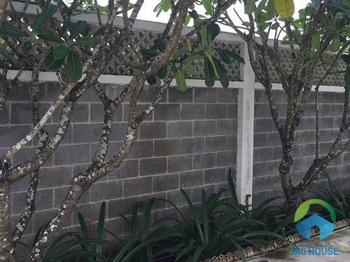 gạch ốp tường hàng rào nhẹ nhàng