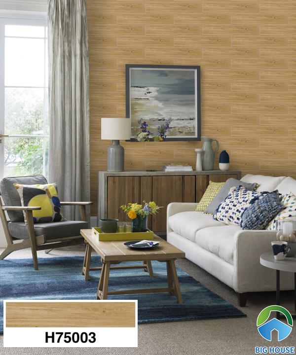 Gạch ốp tường phòng khách nhà cấp 4 Bạch Mã H75003